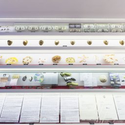 collections on display in the NYC elevator museum