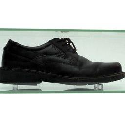 'shoe thrown at george w. bush'